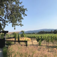 napa valley private wine tours